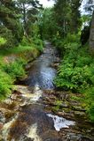 Hooglandstroom in Schotland Royalty-vrije Stock Afbeelding