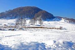 Hoogste berg die door sneeuw wordt behandeld Stock Afbeeldingen