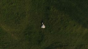 Hoogste mening die van huwelijkspaar bij groen gras en het rusten liggen stock videobeelden