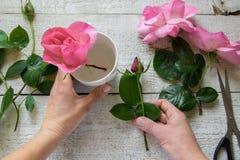 Hoogste mening die van vrouwelijke decorateur rozen op de houten lijst schikken royalty-vrije stock afbeelding
