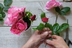Hoogste mening die van vrouwelijke decorateur rozen op de houten lijst schikken royalty-vrije stock afbeeldingen