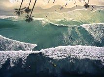 Hoogste mening New Smyrna Beach stock foto