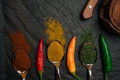 Hoogste mening over oosterse kruiden in lepels en verspreid en peper op het zwarte metaaldienblad in Aziatische stijl royalty-vrije stock fotografie