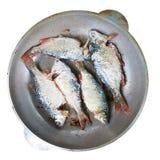 Hoogste mening van de riviervis, die in een ronde pan gebraden is Het koken op het gebied Populaire keuken voor reizigers en mens royalty-vrije stock fotografie