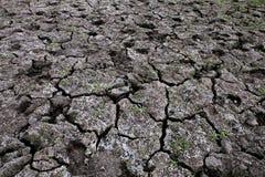 Hoogste mening van droge gebarsten grond met gras royalty-vrije stock foto's