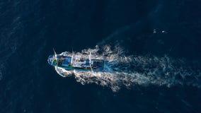 Hoogste mening van een vissersboot die in de Atlantische Oceaan varen stock footage