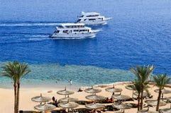 Hoogste mening van een zandig strand met sunbeds en zonparaplu's en twee grote witte schepen, een boot die, een cruisevoering in  stock afbeelding