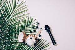 Hoogste mening van gastronomisch kokosnotenroomijs met bosbessen en groene palmbladen op wit royalty-vrije stock afbeelding