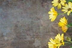Hoogste mening van gele bloemen op oude houten rustieke achtergrond stock afbeeldingen