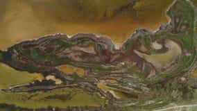 Hoogste mening van gevormd vuil water van moeras schot Het zure bruine water met groen struikgewas kijkt als vloeibare kunst vana stock footage