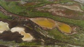 Hoogste mening van gevormd vuil water van moeras schot Het zure bruine water met groen struikgewas kijkt als vloeibare kunst vana stock video