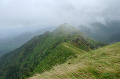 Hoogste mening van groene heuvels Royalty-vrije Stock Foto's