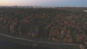 Hoogste mening van het landschap van centraal Rusland met bomen die met de herfstgebladerte behandeld zijn stock video
