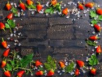 Hoogste mening van kroon van droge en Spaanse pepers, overzees verschillend zout, Royalty-vrije Stock Afbeelding