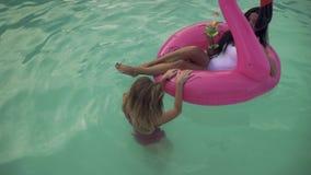 Hoogste mening van leuk krullend blonde die pret hebben die opblaasbare flamingo met het drinken coctail heet brunette op azuurbl stock video