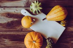 Hoogste mening van leuke minipompoenen en witte raad op rustieke lijst Stock Fotografie