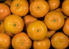 Hoogste mening van mandarijntjes Royalty-vrije Stock Afbeelding