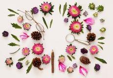 Hoogste mening van mooie roze bloemen op witte achtergrond Stock Foto