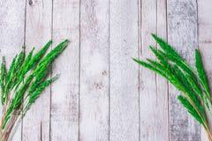 Hoogste mening van padie, als bloemen op witte houten lijst royalty-vrije stock afbeeldingen