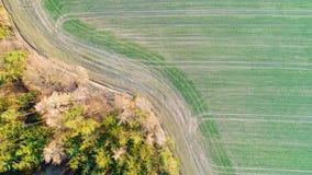 Hoogste mening van rand tussen bos en groen gebied Aardachtergrond van textuurgrens stock afbeelding