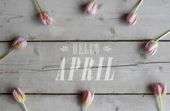 Hoogste mening van roze tulpen op houten grond, met tekst hello april royalty-vrije stock afbeeldingen