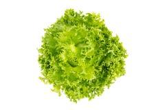 Hoogste mening van Saladebladeren, Frillice-Ijsberg Stock Afbeeldingen