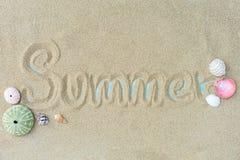 Hoogste mening van Strandzand met shells De zomerachtergrond royalty-vrije stock foto's
