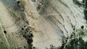Hoogste mening van verbazende witte die helling van een berg met bomen en struiken wordt behandeld schot Antenne voor de klip met stock video