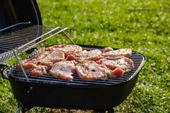 Hoogste mening van vers die vlees en groente bij de grill op gras wordt geplaatst stock afbeeldingen
