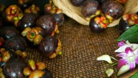 Hoogste mening van verse heerlijke geoogste mangostans op houten lijst Thais organisch purper fruit in de mand stock video