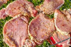 Hoogste mening van verse ruwe vlees en groente bij de grill die op gras wordt geplaatst Royalty-vrije Stock Fotografie