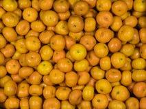 Hoogste mening van verse sinaasappelen Royalty-vrije Stock Foto's