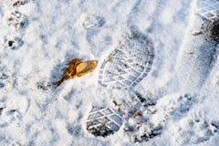 Hoogste mening van voetafdruk op de eerste sneeuw in de herfst stock foto