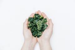 Hoogste mening van Vrouwenhanden met vers scherpe Verse organische boerenkool Royalty-vrije Stock Afbeelding