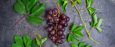 Hoogste meningsbos van rode druiven en groene bladeren met waterdalingen op de donkere concrete achtergrond Selectieve nadruk, br Stock Afbeelding