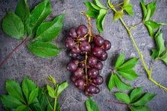 Hoogste meningsbos van rode druiven en groene bladeren met waterdalingen op de donkere concrete achtergrond Selectieve nadruk Royalty-vrije Stock Foto