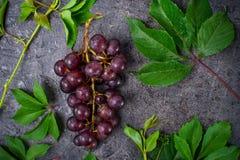 Hoogste meningsbos van rode druiven en groene bladeren met waterdalingen op de donkere concrete achtergrond Selectieve nadruk Rui Stock Afbeelding