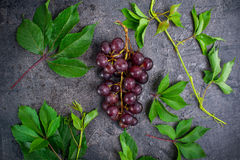 Hoogste meningsbos van rode druiven en groene bladeren met waterdalingen op de donkere concrete achtergrond Selectieve nadruk Stock Foto's