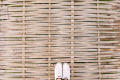 Hoogste meningstennisschoenen op bamboebrug, Hipster-stijl stock afbeelding