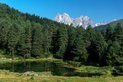 Hoogste Ushba in de Kaukasus Royalty-vrije Stock Afbeeldingen