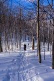 Hoogste vorm door in Val David snowshoeing royalty-vrije stock foto