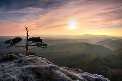 Hoogtepunt van de de herfst het nevelige vallei van de mening van de ochtendmist door takken Mistige en nevelige dageraad op het  royalty-vrije stock afbeelding