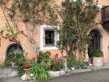 Hoogtepunt van kleurrijke bloemen op de vensterbank stock fotografie