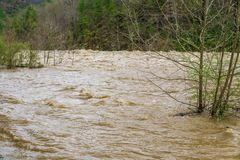 Hoogwaterstroomversnelling op Maury River stock afbeeldingen