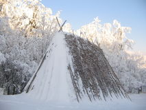 Hooi in de berg van Servië Stock Foto's