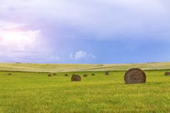 Hooi en balen van stro in de recente zomer Royalty-vrije Stock Foto
