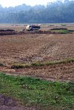 Hooi Geladen Vrachtwagen in het midden van landbouwlandbouwbedrijf Royalty-vrije Stock Afbeelding