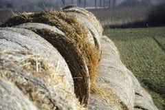 Hooibaal in het platteland Stock Foto