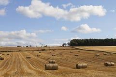 Hooibalen bij oogst in Schotland Stock Afbeelding