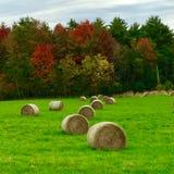 Hooibalen op een gebied in Maine Royalty-vrije Stock Fotografie
